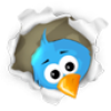 Peeking Twitter bird