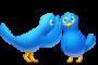 Two Twitter birds