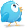 Round Twitter bird profile shot