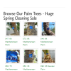 Affordable Tree Service - Your Tree Service Experts in the Las Vegas Valley -iphone