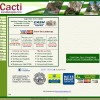 Cacti Landscapes Homepage Before