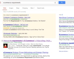 Ecommerce Requirements  Google Search Nina Khoury verified author