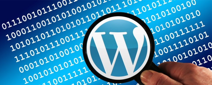 Working With WordPress: What's In Your Theme?