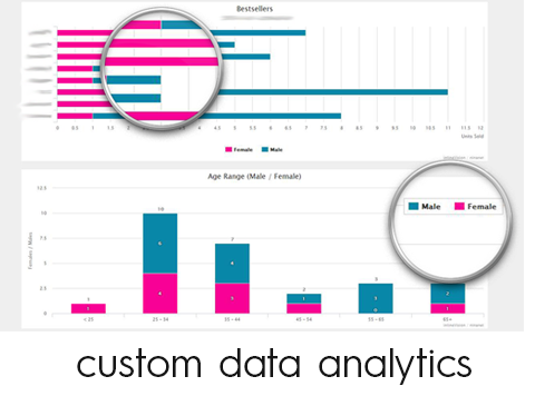 inlineVision Data Analytics & Visualization